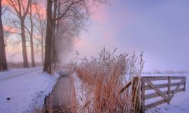 We Live by Light/Holland  Winterochtend 3 9890 - Fotobehang - Noordwand