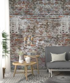 Behangexpresse Special Edition AK1049 Bricks/ Industrieel/Baksteen/Verweerd/Cement/Landelijk/Steen Fotobehang