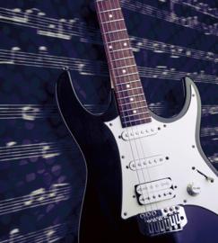 Dimex Fotobehang Electric Guitar MS-3-0304 Elektrische Gitaar/Muziek/Instrumenten