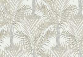 Hookedonwalls Jungle Jive Behang 36533 Palma/Bomen/Modern