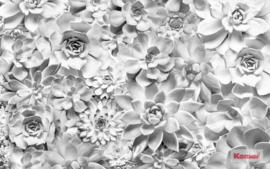 Komar Pure P962-VD4 Shades Black and White/Bloemen/Modern/Grijs Fotobehang Noordwand