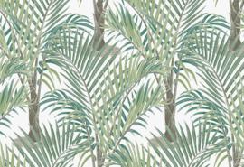Hookedonwalls Jungle Jive Behang 36531 Palma/Bomen/Modern