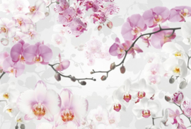Komar Stories XXL4-032 Allure/Romantisch/Bloemen/Orchidee Fotobehang - Noordwand