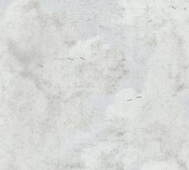 AS Creation History of Art Behang 37649-1 Uni/Wolk effect/Verweerd/Natuurlijk/Modern
