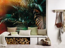 AS Creation Designwalls Fotobehang DD118795 Jungle Colour/Bladeren/Botanical/Natuurlijk