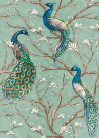 AS Creation Absolutely Chic Digitale Druk DD114648 Bird Turquoise/Peacock/Pauw/Vogels