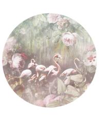 Behangexpresse Floral-Utopia Cirkel Flamingo Found Light INK319 Botanisch/Vogels