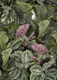 Behangexpresse Special Edition AK1028 Soft Greens/ Botanisch/Dieren/Planten/Tropisch Fotobehang