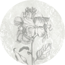 Komar Home Imagine Edition 4 Fotobehang D1-031 Barock Beauty/Bloem/Barok/Natuurlijk/Modern