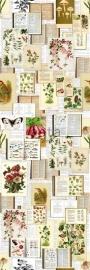 Esta Home Brooklyn Bridge Behang 158508  Botanical Mural/Poster/Fotobehang