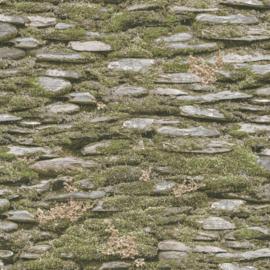 Noordwand Evergreen Behang 7336 Steen/Mos/Botanisch/Landelijk/Natuurlijk