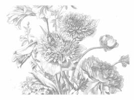 KEK Amsterdam II Fotobehang WP-338 Engraved Flowers/Bloemen/Botanisch/Grijs