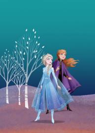 Komar/Disney Edition4 Poster/Affiche WB071 Frozen/Sisters/Kinderkamer Afbeelding