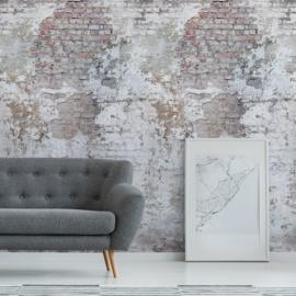Dutch Wallcoverings One Roll One Motif Behang A42301 Stressed Brick/Cement/Beton/Bakstenen/Modern