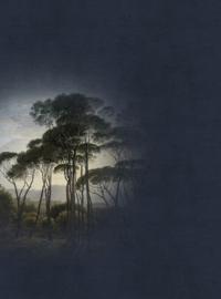 AS Creation Living Walls by Patel Fotobehang DD110672 Fresco 5 Bomen/Natuur/Landschap Behang