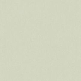 AS Creation Floral Impression Behang 37703-3 Uni/Structuur/Natuurlijk/Modern