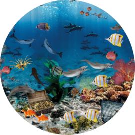 Behangexpresse Sofie & Junar Circle INK323 Aquarium/Vissen/Koraal/Onderwaterwereld