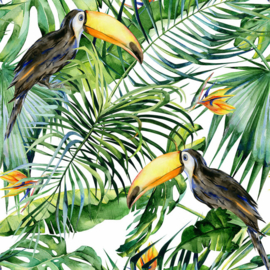 ASCreation Greenery Fotobehang DD116610 Botanisch/Tropical/Vogels/Toekan 2