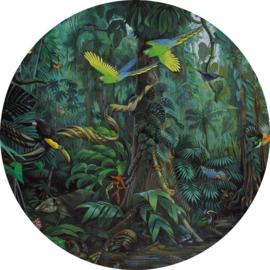 KEK Amsterdam Kids Circle CK-022 Tropical Landscapes/Natuur/Dieren/Vogels/Cirkel Behang