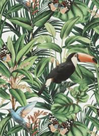 Behangexpresse Paradisio 2 Behang 10121-07 Toekan/Botanisch/Tropical/Natuurlijk/Vogels