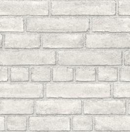 Dutch Wallcoverings Trilogy Behang FD24051 Steen/Baksteen/Natuurlijk