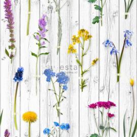 Esta Home Greenhouse Behang 158828 Botanisch/Planten/Bloemen Fotobehang
