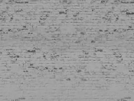 BN Studios/BN Wallcoverings Murals Fotobehang 200410 Bricks/Bakstenen/Steen/Modern/Landelijk/Grijs