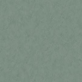 Dutch Wallcoverings Annuell Behang 61037 Uni/Structuur/Landelijk/Kalk Look/Modern/Grijsgroen