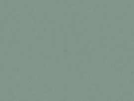 BN Wallcoverings Grand Safari Behang  220508 Leather /Uni/Leer Structuur/Dieren Huiden/Natuurlijk/Modern