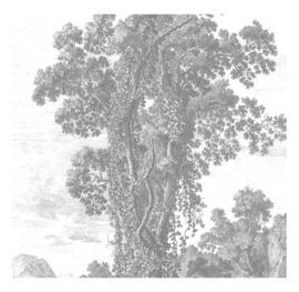 Kek Amsterdam WP 318 Engraved Landscapes Fotobehang - Dutch Wallcoverings