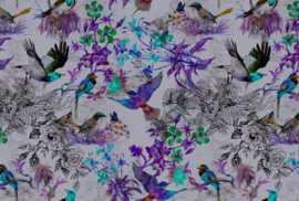 AS Creation Living Walls by Patel Fotobehang DD110182 Funky Birds2/Botanisch/Vogels Behang