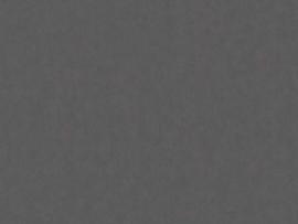 BN Wallcoverings Grand Safari Behang  220506 Leather /Uni/Leer Structuur/Dieren Huiden/Natuurlijk/Modern