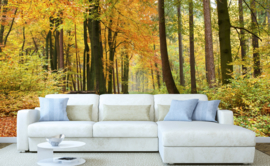 Dimex Fotobehang Autumn Forest MS-5-0099 Bos/Herfst/Natuur/Bomen