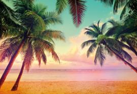 Komar Home Imagine Edition 4 Fotobehang 8-967 Miami/Tropisch/Palmboom/Zee/Strand