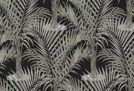 Hookedonwalls Jungle Jive Behang 36534 Palma/Bomen/Natuur