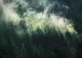Komar Home Imagine Edition 4 Fotobehang X7-1003 Misty Crowns/Mist/Wolken/Natuurlijk