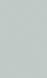 BN Wallcoverings #Smalltalk Behang 219211 Grijsgroen