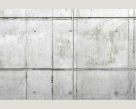 AS Creation Beton Behang 470127 Modern/Beton/Industrieel Fotobehang