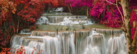 Dimex Fotobehang Rain Forest MP-2-0072 Panorama/Waterval/Bomen/Landschap