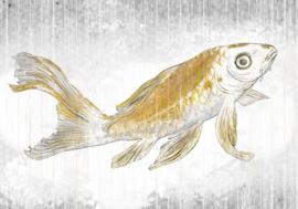 Noordwand Komar Raw Fotobehang RSX8-049 Golden Koi/Karpers/Vissen/Dieren/Goud/Natuurlijk