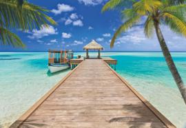Komar Home Imagine Edition 4 Fotobehang 8-921 Beach Resort/Strand/Loopplank/Palmboom