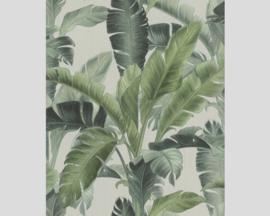 Rasch Barbara Home Collection Behang 536683 Botanisch/Bladeren/Natuurlijk