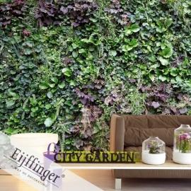 Eijffinger Wallpower Wonders Behang 321558 Vertical Garden/Tuin/Heg/Fotobehang