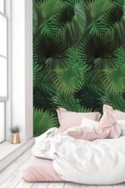 Kek Amsterdam WP 501 Botanical Palm Fotobehang  - Dutch Wallcoverings