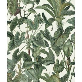 Behangexpresse Paradisio Behang 6303-07 Bladeren/Botanisch Behang