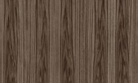 Arte Ligna Behang 42053 Roots/Hout/Exclusief Wandbekleding Bruin