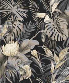 Noordwand Amazzonia Behang 22009 Tropical/Botanisch/Toekan/Vogels