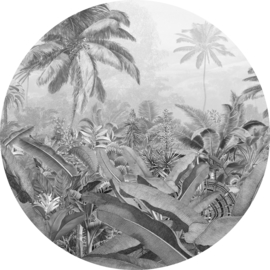 Komar Home Imagine Edition 4 Fotobehang D1-055 Amazonia Spirit/Botanisch/Cirkel