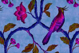 ASCreation Walls by Patel Fotobehang Bird of Paradise 1 DD113837 Vogel/Botanisch/Boomtak