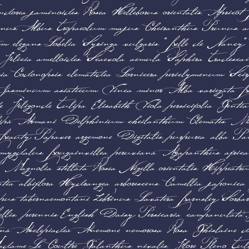 Esta Home Ginger Behang 128040 Romantisch/Geschreven Tekst